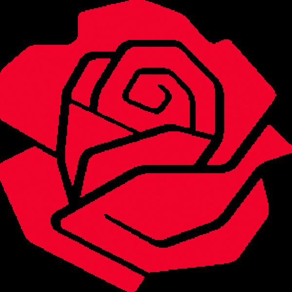 rose_rød